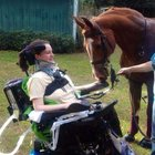 I9g1 zVh SUJ28S  nRjMjgdwQC3fJnKp9rzaZ ArlU Three months after my horse riding accident with Chester that rendered me a ventilator quadriplegic. I have found a way to define him.