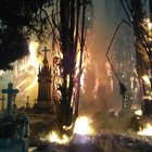 LtNwr3Tu4 pT6EWGypsH2KD1 JUrsxeS3l8xAZFTqJ0 This cemetery fire from yesterday looks like a horror movies climax