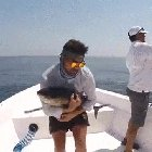 WPwtxl0edWnzgzcAqm5XvRTGT6Ombv0KWoZTbjEx6H0 There was an attempt to take a picture with a fish